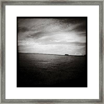 Distant Trees Framed Print by Dave Bowman
