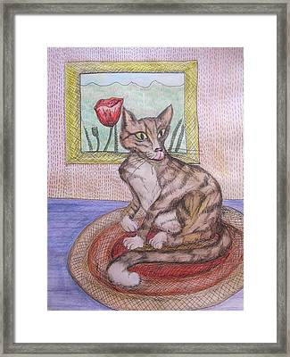 Distracted Cat Framed Print by Cherie Sexsmith