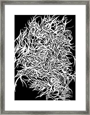 Divergant Bw Framed Print by Jamie Lynn