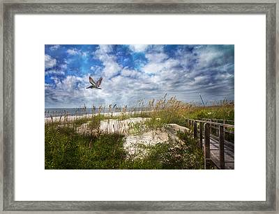 Divine Beach Day  Framed Print by Betsy C Knapp