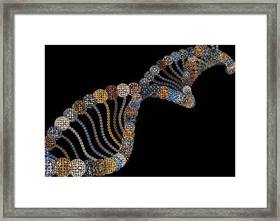 DNA Framed Print by Fine Art  Photography