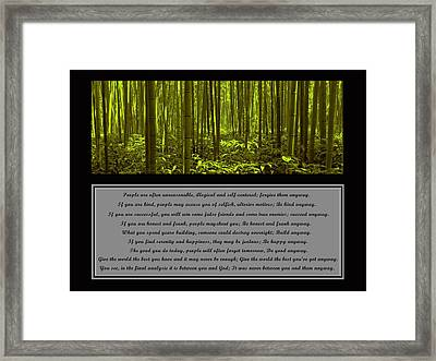 Do It Anyway Bamboo Forest Framed Print by David Dehner