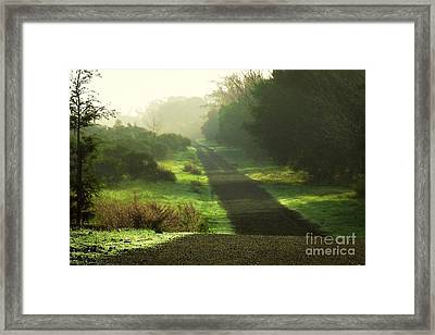 Do We Ever Really Know What Lies Ahead Framed Print by Ellen Cotton