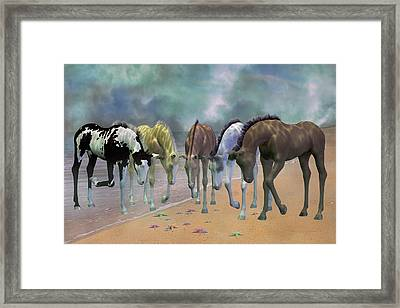 Do You See Stars Framed Print by Betsy C Knapp