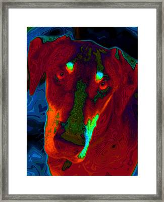 Doberman Pop Art Framed Print by Eti Reid