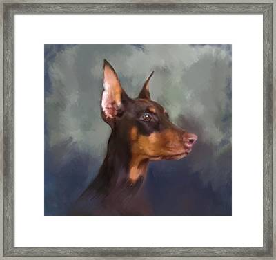 Dobermann Portrait Framed Print by Enzie Shahmiri