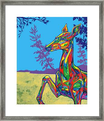 Doe Framed Print by Derrick Higgins
