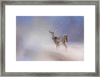 Doe In The Snow Framed Print by Jai Johnson