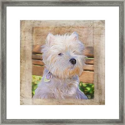Dog Art - Just One Look Framed Print by Jordan Blackstone