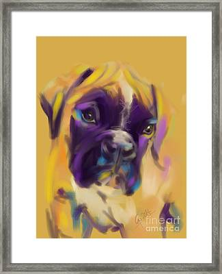 Dog Boxer Bobby Framed Print by Go Van Kampen