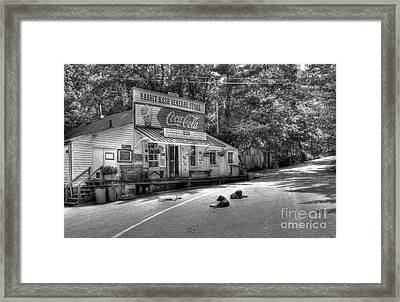 Dog Day Afternoon Bw Framed Print by Mel Steinhauer