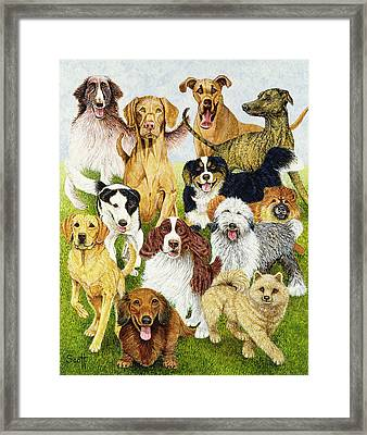 Dog Days Framed Print by Pat Scott