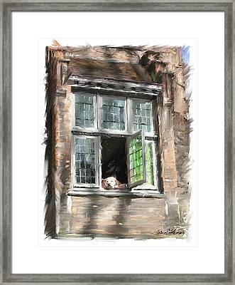 Dog In Window- Bruges Framed Print by James Scott Fleming