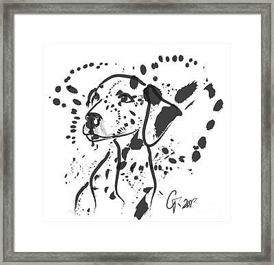 Dog Spot Framed Print by Go Van Kampen
