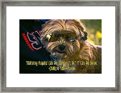 Dog Training Humans Framed Print by Kathy Tarochione