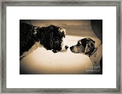Doggie Meet 'n Greet Framed Print by Lynda Dawson-Youngclaus