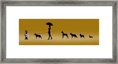 Doggie Queue Framed Print by Peter Stevenson