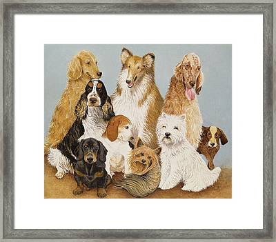 Dogs Dinner  Framed Print by Pat Scott
