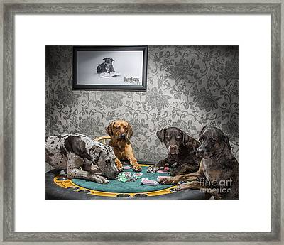 Dogs Playing Poker Framed Print by Darcy Evans