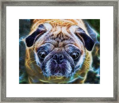 Dogs - The Psychedelic Fantasy Pug Framed Print by Lee Dos Santos