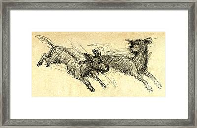 Dogsketch Framed Print by Nato  Gomes