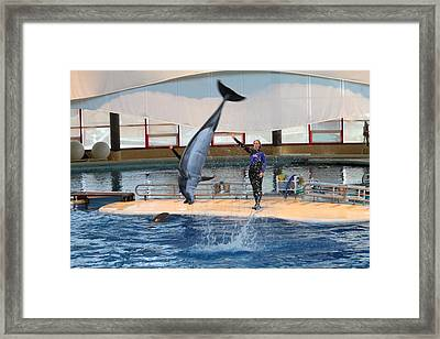 Dolphin Show - National Aquarium In Baltimore Md - 1212136 Framed Print by DC Photographer