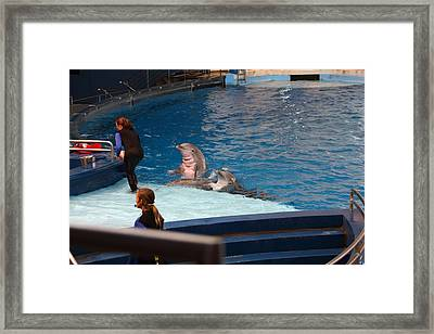 Dolphin Show - National Aquarium In Baltimore Md - 1212175 Framed Print by DC Photographer