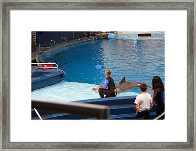 Dolphin Show - National Aquarium In Baltimore Md - 1212221 Framed Print by DC Photographer