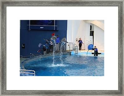 Dolphin Show - National Aquarium In Baltimore Md - 121289 Framed Print by DC Photographer