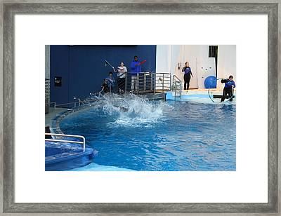 Dolphin Show - National Aquarium In Baltimore Md - 121293 Framed Print by DC Photographer