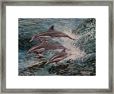 Dolphins In Motion Framed Print by Caroline Street