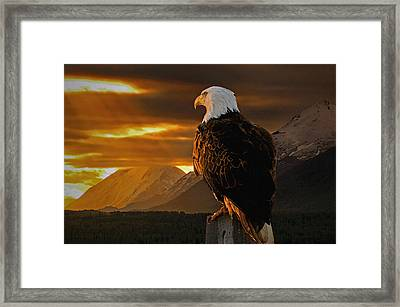 Domain Framed Print by Ron Day