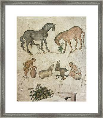 Domestic Animals Mozaic Framed Print by David Parker