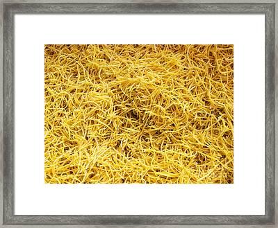 Domestic Noodles Framed Print by Sinisa Botas