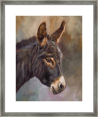 Donkey Framed Print by David Stribbling