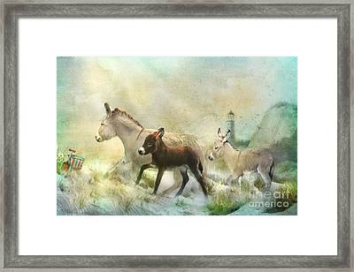 Donkey's Day Off Framed Print by Trudi Simmonds
