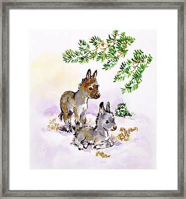 Donkeys Framed Print by Diane Matthes