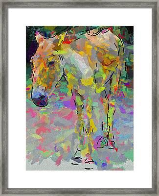 Donkey's Dreams Framed Print by Yury Malkov