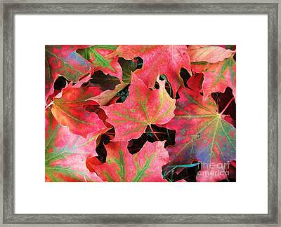 Don't Leave Framed Print by Martin Howard