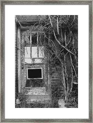 Door With Vines Framed Print by Michelle OConnor