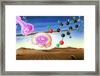 Dopamine Brain Chemistry Framed Print by John Bavosi