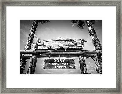 Dory Fishing Fleet Black And White Picture Framed Print by Paul Velgos