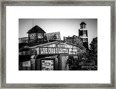 Dory Fishing Fleet Live Crab And Lobster Sign Picture Framed Print by Paul Velgos