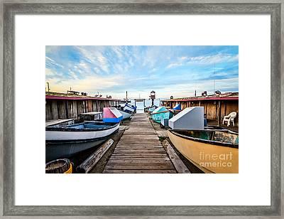 Dory Fishing Fleet Newport Beach California Framed Print by Paul Velgos