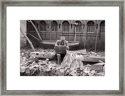 Double Check Framed Print by Terry Weaver