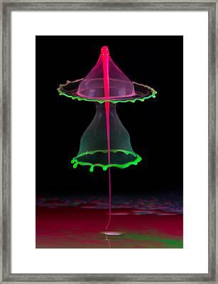 Double Hood Framed Print by Jaroslaw Blaminsky
