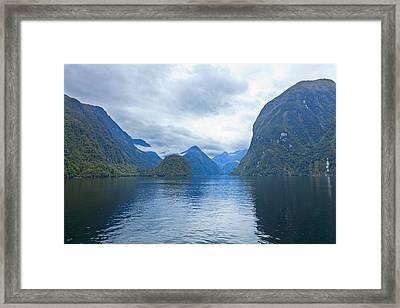 Doubtful Sound Reflections Framed Print by Alexey Stiop