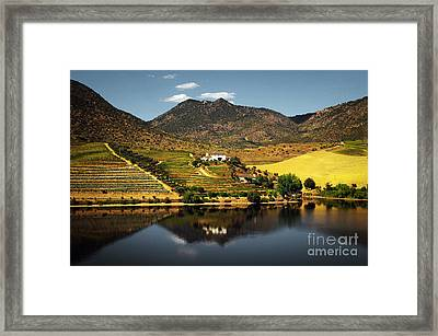 Douro Landscape Ill Framed Print by Carlos Caetano