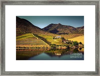 Douro Landscape Iv Framed Print by Carlos Caetano