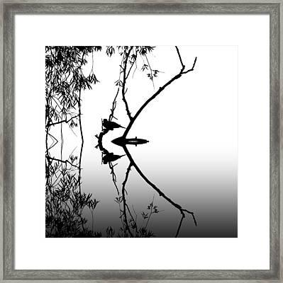Dove Grey Framed Print by Sharon Lisa Clarke